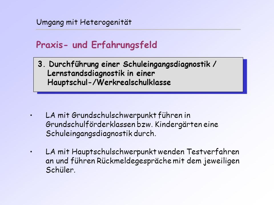 Umgang mit Heterogenität Praxis- und Erfahrungsfeld 3. Durchführung einer Schuleingangsdiagnostik / Lernstandsdiagnostik in einer Hauptschul-/Werkreal