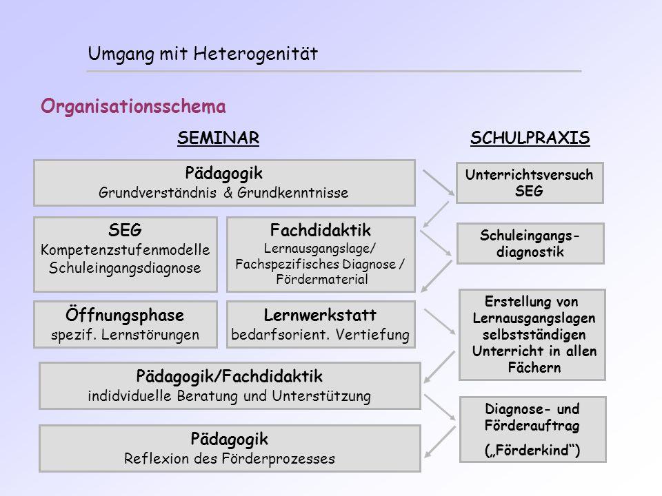 Umgang mit Heterogenität Organisationsschema SEMINAR SCHULPRAXIS Unterrichtsversuch SEG Pädagogik Grundverständnis & Grundkenntnisse Fachdidaktik Lern