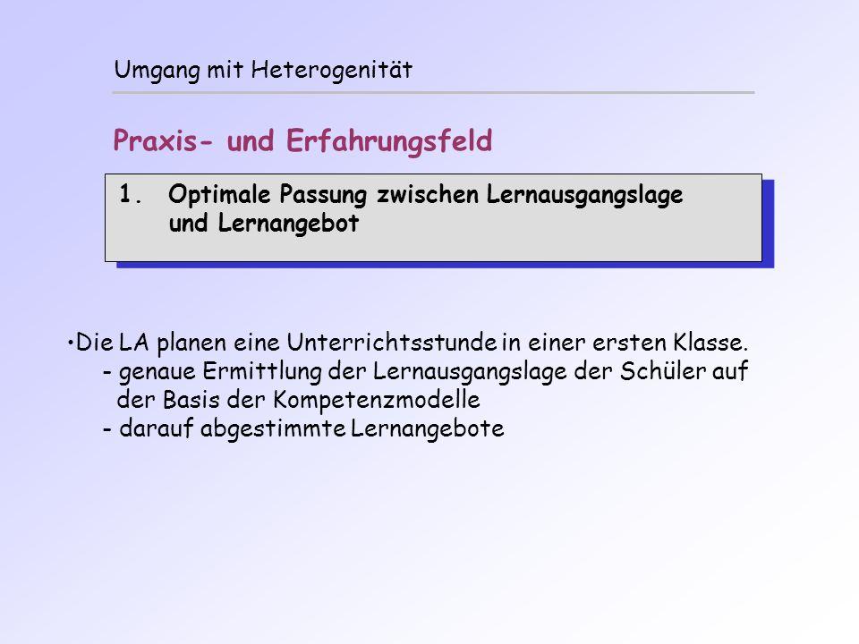 Umgang mit Heterogenität Praxis- und Erfahrungsfeld 1.Optimale Passung zwischen Lernausgangslage und Lernangebot 1.Optimale Passung zwischen Lernausga