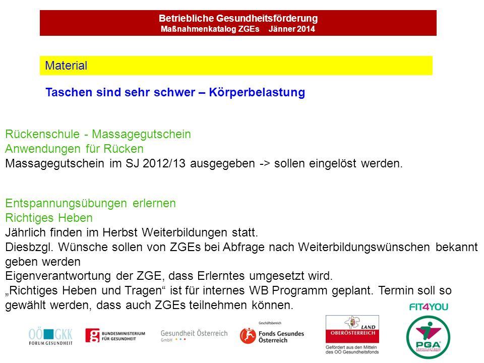Betriebliche Gesundheitsförderung Maßnahmenkatalog ZGEs Jänner 2014 Taschen sind sehr schwer – Körperbelastung Material Rückenschule - Massagegutschei