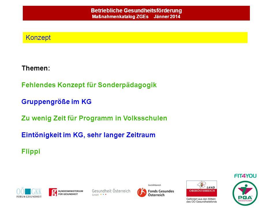 Betriebliche Gesundheitsförderung Maßnahmenkatalog ZGEs Jänner 2014 Themen: Fehlendes Konzept für Sonderpädagogik Gruppengröße im KG Zu wenig Zeit für