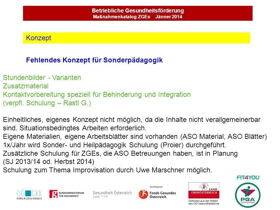 Betriebliche Gesundheitsförderung Maßnahmenkatalog ZGEs Jänner 2014 Fehlendes Konzept für Sonderpädagogik Konzept Stundenbilder - Varianten Zusatzmate