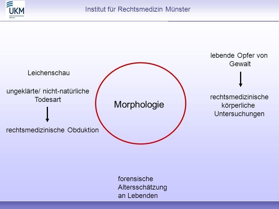 Morphologie Institut für Rechtsmedizin Münster ungeklärte/ nicht-natürliche Todesart rechtsmedizinische Obduktion rechtsmedizinische körperliche Unter