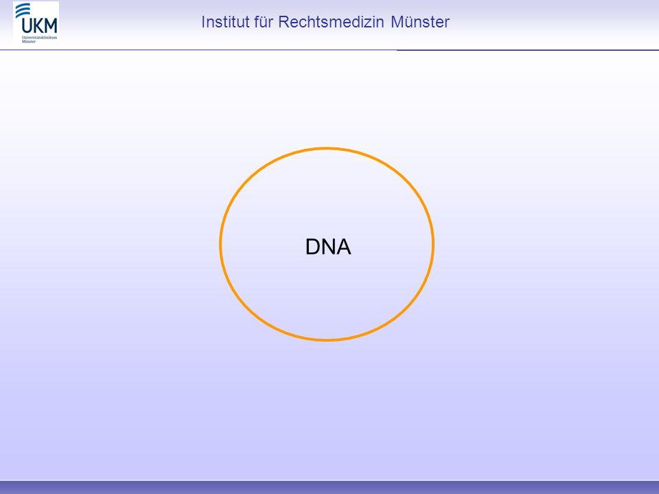 Institut für Rechtsmedizin Münster DNA