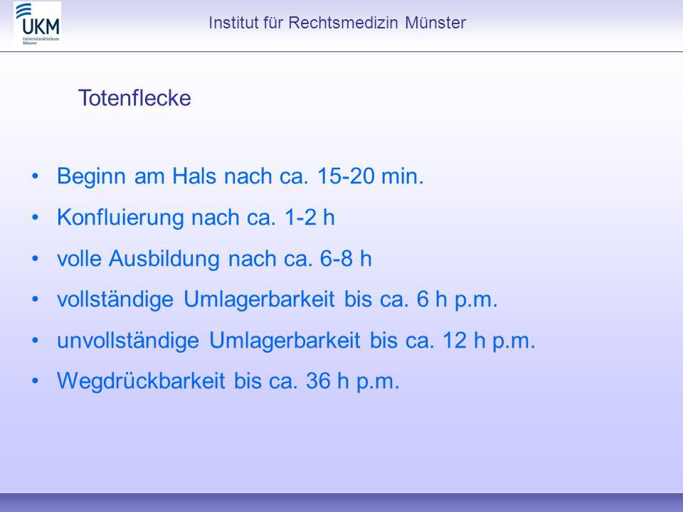 Institut für Rechtsmedizin Münster Totenflecke Beginn am Hals nach ca. 15-20 min. Konfluierung nach ca. 1-2 h volle Ausbildung nach ca. 6-8 h vollstän