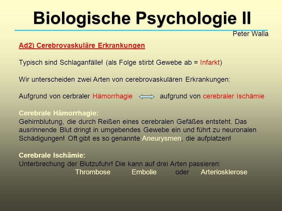 Biologische Psychologie II Peter Walla Ad2) Cerebrovaskuläre Erkrankungen Typisch sind Schlaganfälle! (als Folge stirbt Gewebe ab = Infarkt) Wir unter