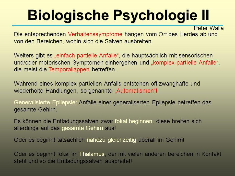 Biologische Psychologie II Peter Walla Die entsprechenden Verhaltenssymptome hängen vom Ort des Herdes ab und von den Bereichen, wohin sich die Salven