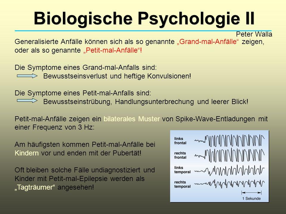 Biologische Psychologie II Peter Walla Generalisierte Anfälle können sich als so genannte Grand-mal-Anfälle zeigen, oder als so genannte Petit-mal-Anf