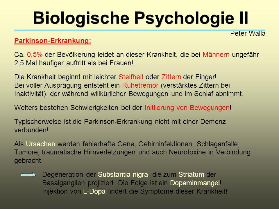 Biologische Psychologie II Peter Walla Parkinson-Erkrankung: Ca. 0,5% der Bevölkerung leidet an dieser Krankheit, die bei Männern ungefähr 2,5 Mal häu