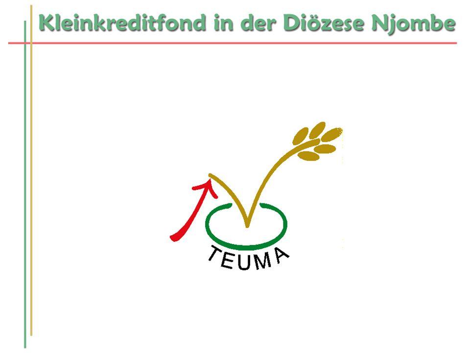 Kurze Vorstellung Geschichte von TEUMA Motivationsgrundlage des Aufenthalts Aufgabengebiet bei TEUMA Was ist TEUMA.