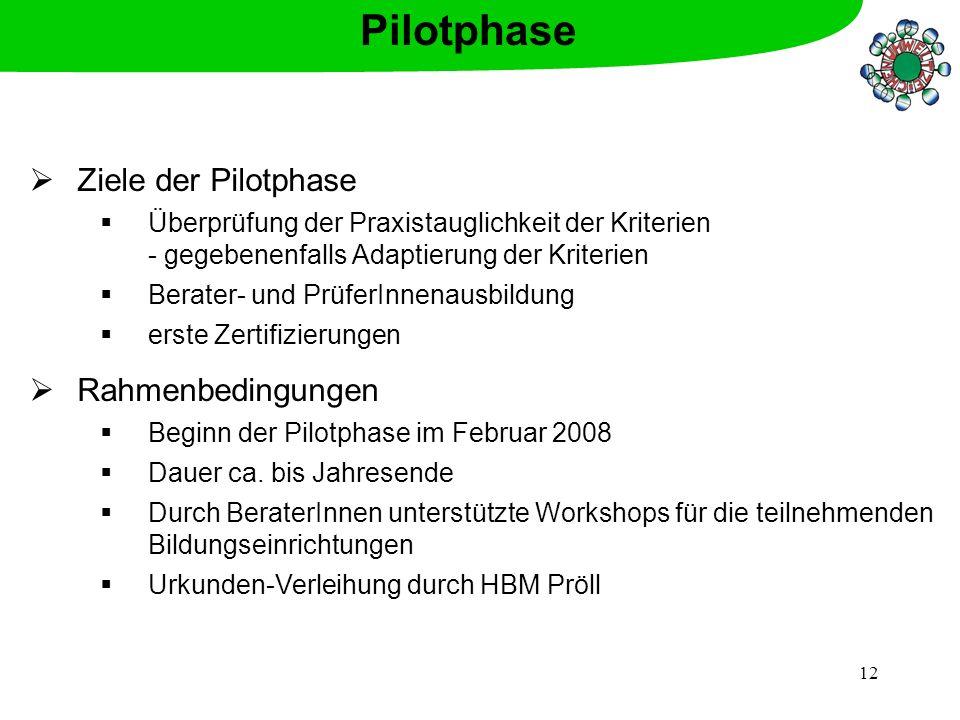 12 Ziele der Pilotphase Überprüfung der Praxistauglichkeit der Kriterien - gegebenenfalls Adaptierung der Kriterien Berater- und PrüferInnenausbildung
