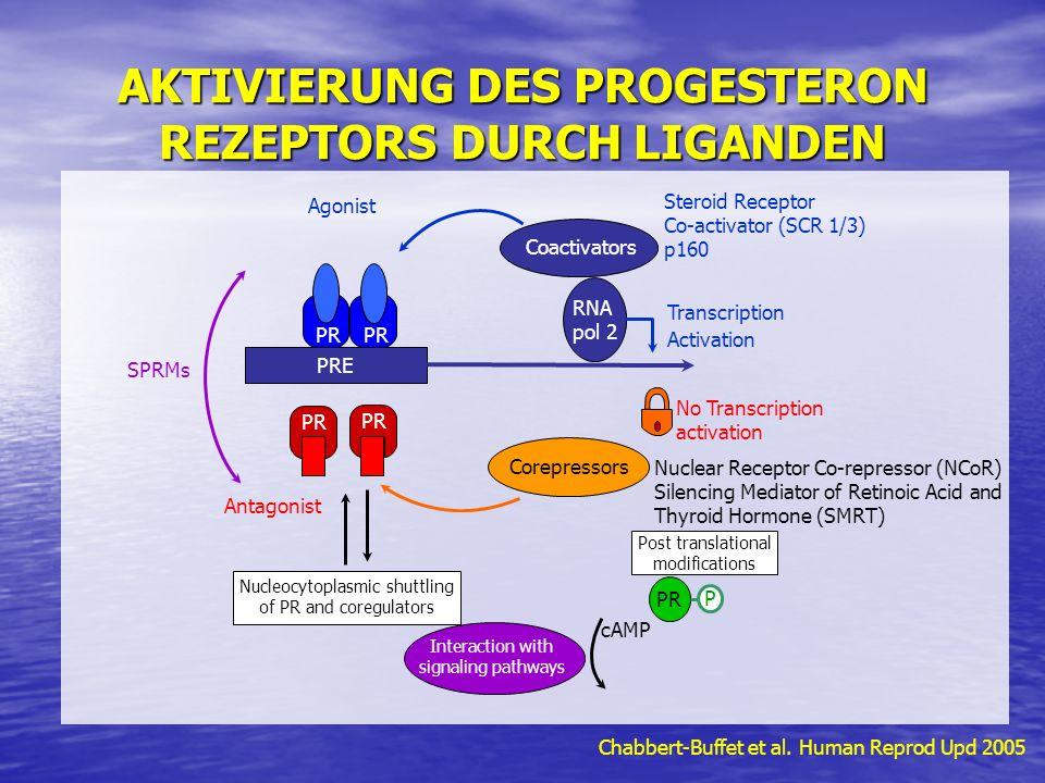 AKTIVIERUNG DES PROGESTERON REZEPTORS DURCH LIGANDEN Chabbert-Buffet et al. Human Reprod Upd 2005 Agonist PR PRE PR Coactivators Steroid Receptor Co-a