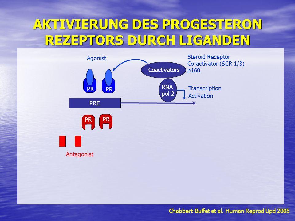 AKTIVIERUNG DES PROGESTERON REZEPTORS DURCH LIGANDEN Chabbert-Buffet et al.
