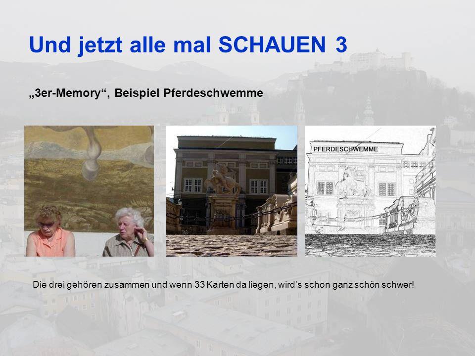 Und jetzt alle mal SCHAUEN 3 3er-Memory, Beispiel Pferdeschwemme Die drei gehören zusammen und wenn 33 Karten da liegen, wirds schon ganz schön schwer!