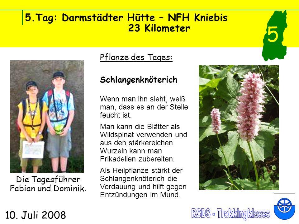 5.Tag: Darmstädter Hütte – NFH Kniebis 23 Kilometer 10. Juli 2008 5 Pflanze des Tages: Schlangenknöterich Wenn man ihn sieht, weiß man, dass es an der