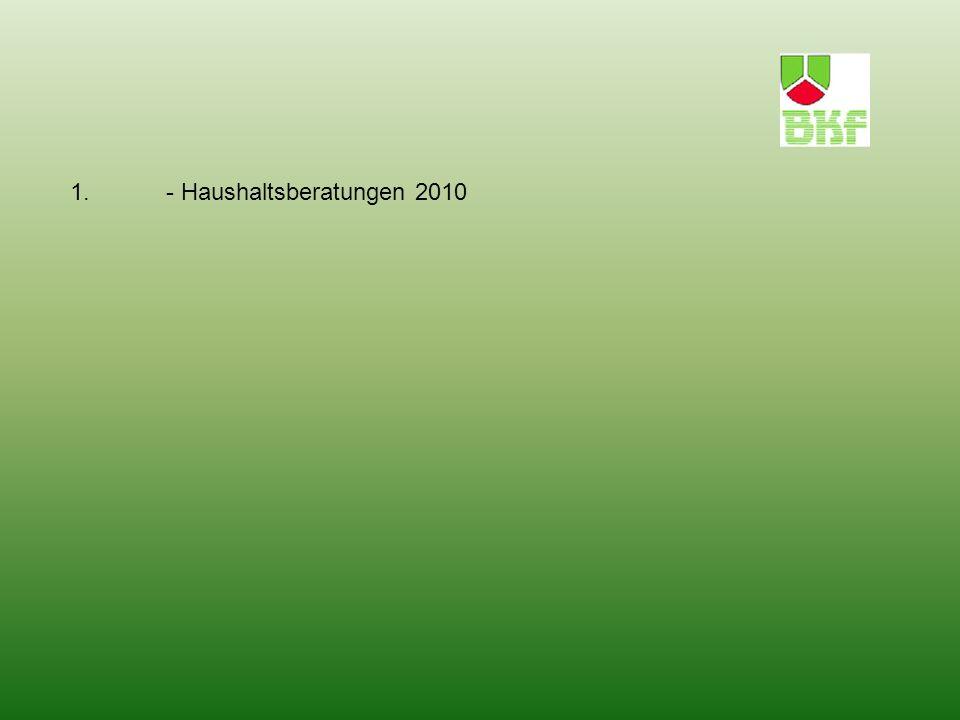 1. - Haushaltsberatungen 2010