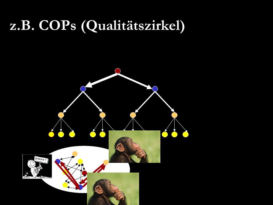 z.B. COPs (Qualitätszirkel)