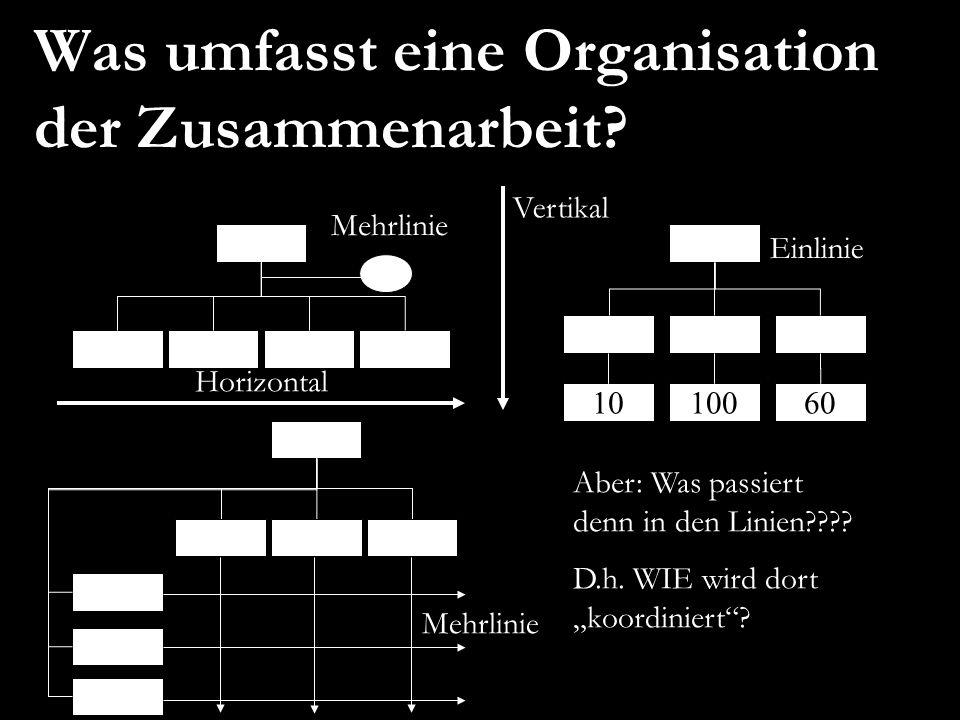 Was umfasst eine Organisation der Zusammenarbeit? 1010060 Horizontal Vertikal Mehrlinie Einlinie Aber: Was passiert denn in den Linien???? D.h. WIE wi
