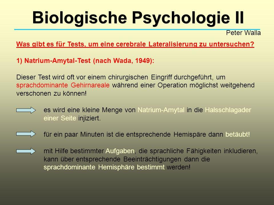 Biologische Psychologie II Peter Walla Was gibt es für Tests, um eine cerebrale Lateralisierung zu untersuchen? 1) Natrium-Amytal-Test (nach Wada, 194