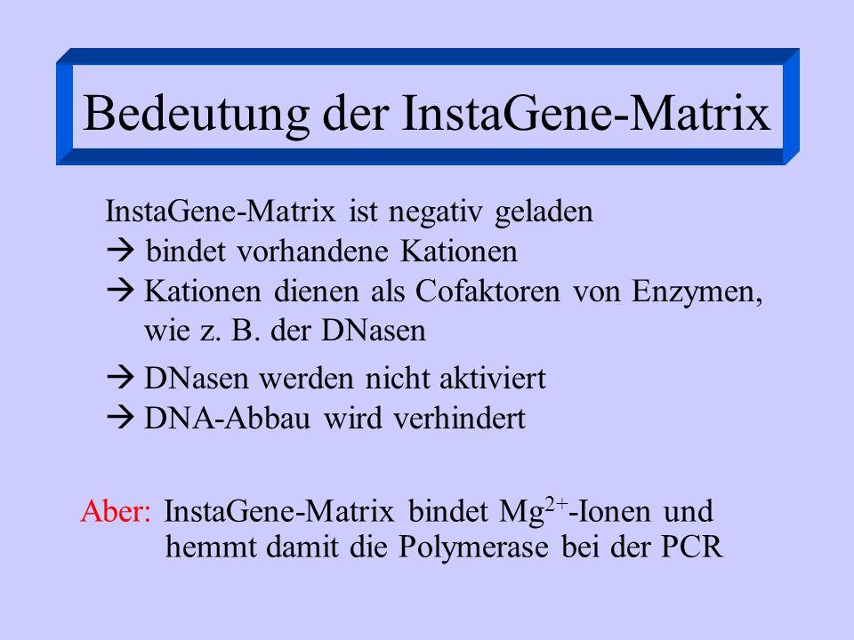 Bedeutung der InstaGene-Matrix InstaGene-Matrix ist negativ geladen bindet vorhandene Kationen Kationen dienen als Cofaktoren von Enzymen, wie z. B. d