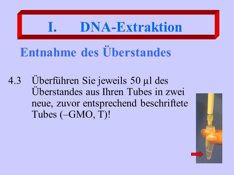 Entnahme des Überstandes 4.3Überführen Sie jeweils 50 µl des Überstandes aus Ihren Tubes in zwei neue, zuvor entsprechend beschriftete Tubes (–GMO, T)