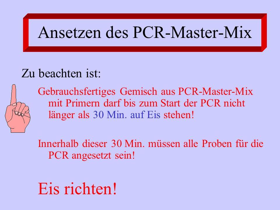 Ansetzen des PCR-Master-Mix Gebrauchsfertiges Gemisch aus PCR-Master-Mix mit Primern darf bis zum Start der PCR nicht länger als 30 Min. auf Eis stehe