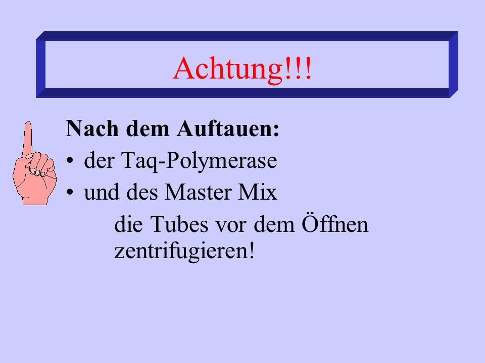 Achtung!!! Nach dem Auftauen: der Taq-Polymerase und des Master Mix die Tubes vor dem Öffnen zentrifugieren!