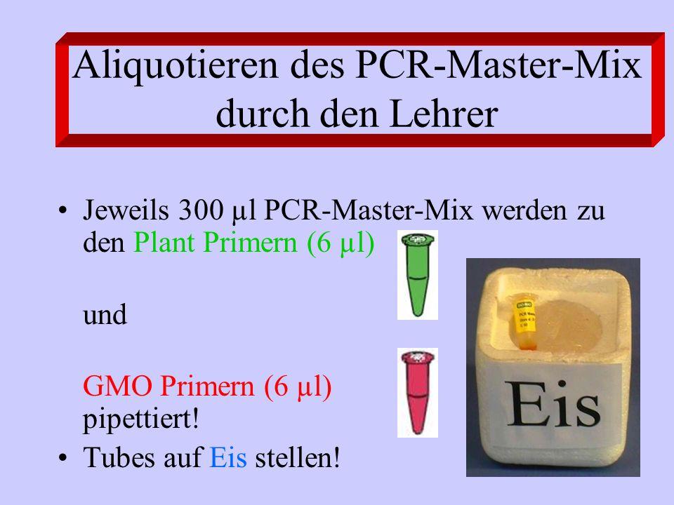 Aliquotieren des PCR-Master-Mix durch den Lehrer Jeweils 300 µl PCR-Master-Mix werden zu den Plant Primern (6 µl) und GMO Primern (6 µl) pipettiert! T