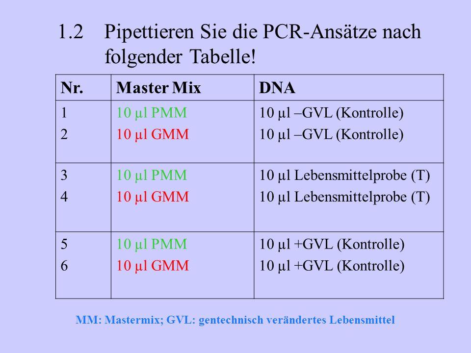 Nr.Master MixDNA 1212 10 µl PMM 10 µl GMM 10 µl –GVL (Kontrolle) 3434 10 µl PMM 10 µl GMM 10 µl Lebensmittelprobe (T) 5656 10 µl PMM 10 µl GMM 10 µl +