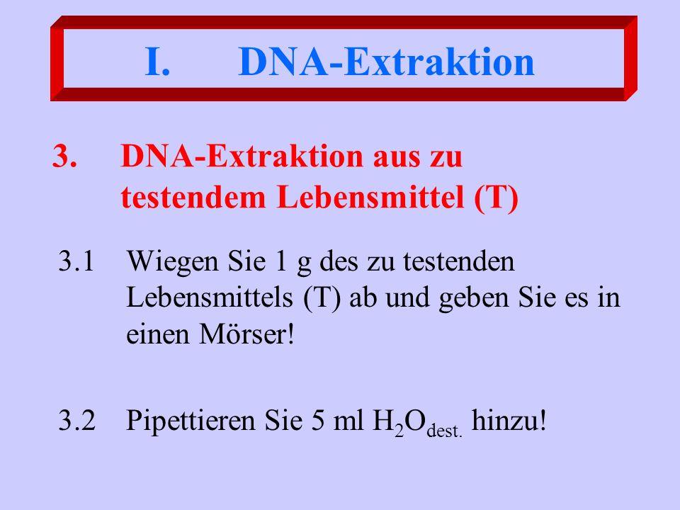 3.DNA-Extraktion aus zu testendem Lebensmittel (T) 3.1Wiegen Sie 1 g des zu testenden Lebensmittels (T) ab und geben Sie es in einen Mörser! 3.2Pipett