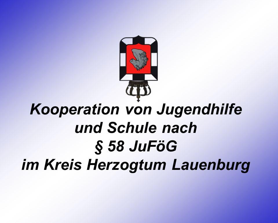 Kooperation von Jugendhilfe und Schule nach § 58 JuFöG im Kreis Herzogtum Lauenburg