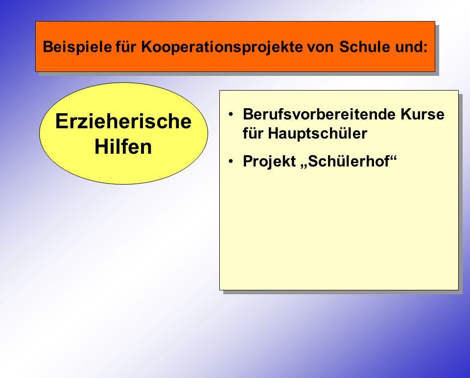 Beispiele für Kooperationsprojekte von Schule und: Erzieherische Hilfen Berufsvorbereitende Kurse für Hauptschüler Projekt Schülerhof