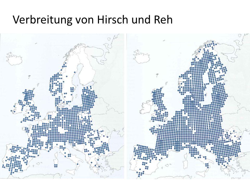 Verbreitung von Hirsch und Reh