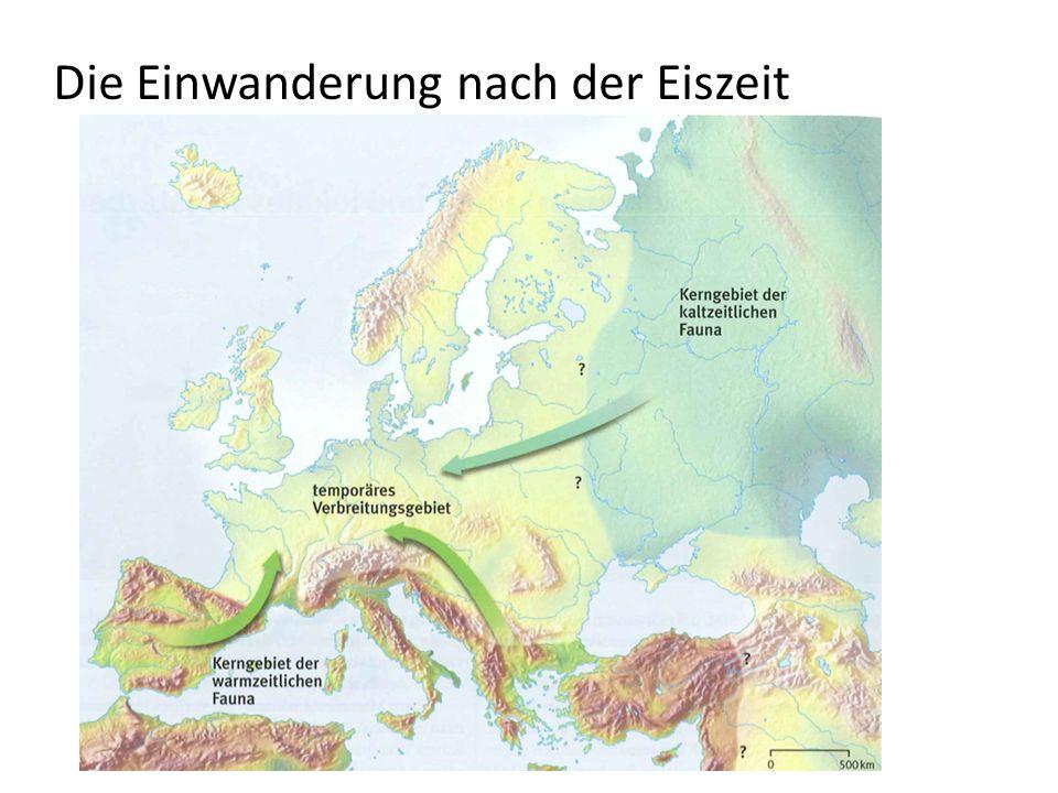 Die Einwanderung nach der Eiszeit