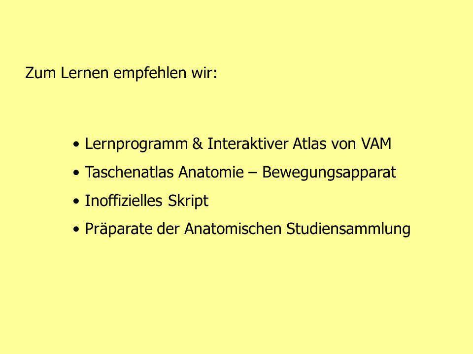 Zum Lernen empfehlen wir: Lernprogramm & Interaktiver Atlas von VAM Taschenatlas Anatomie – Bewegungsapparat Inoffizielles Skript Präparate der Anatom