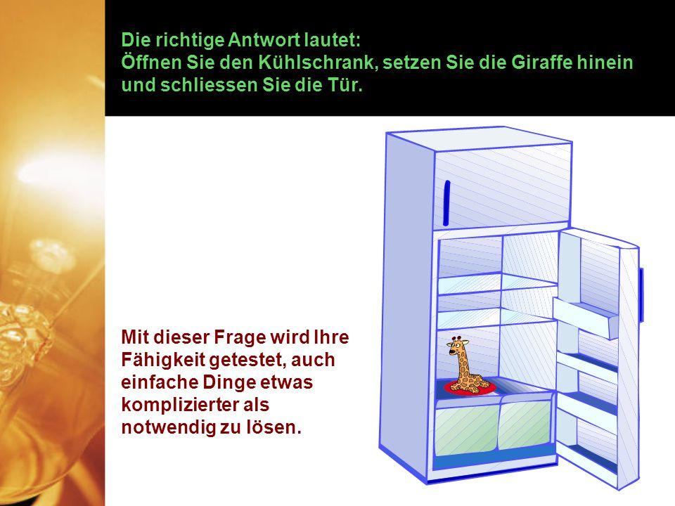 Frage Nummer 2: Wie kann man einen Elefanten in einem mehr oder weniger gewöhnlichen Kühlschrank unterbringen.