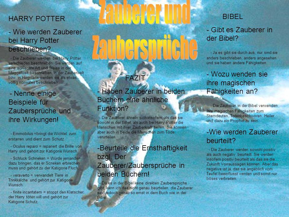 HARRY POTTER - Wie werden Zauberer bei Harry Potter beschrieben? - Die Zauberer werden, bei Harry Potter verschieden beschrieben. Sie werden auf eine