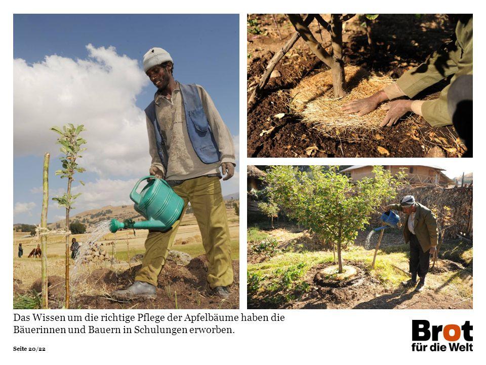 Seite 20/22 Das Wissen um die richtige Pflege der Apfelbäume haben die Bäuerinnen und Bauern in Schulungen erworben.