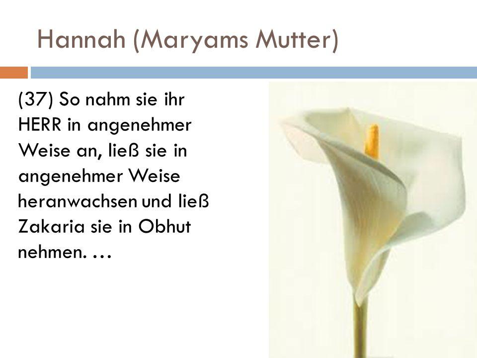 Hannah (Maryams Mutter) (37) So nahm sie ihr HERR in angenehmer Weise an, ließ sie in angenehmer Weise heranwachsen und ließ Zakaria sie in Obhut nehm