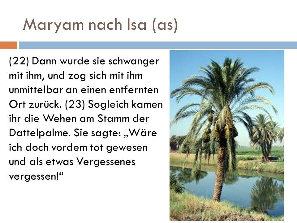 Maryam nach Isa (as) (22) Dann wurde sie schwanger mit ihm, und zog sich mit ihm unmittelbar an einen entfernten Ort zurück. (23) Sogleich kamen ihr d