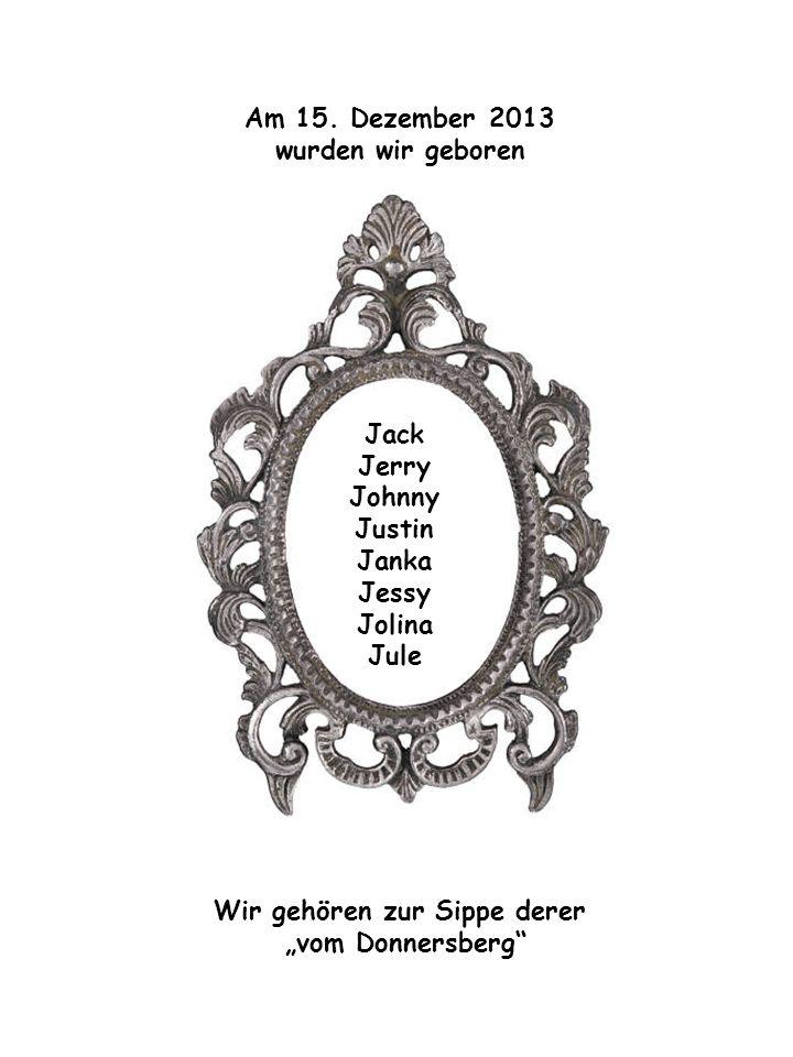 Am 15. Dezember 2013 wurden wir geboren Jack Jerry Johnny Justin Janka Jessy Jolina Jule Wir gehören zur Sippe derer vom Donnersberg Jack Jerry Johnny