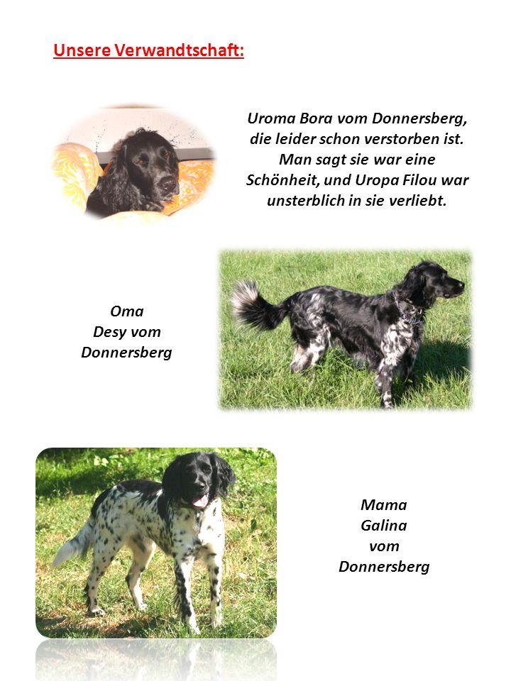 Oma Desy vom Donnersberg Mama Galina vom Donnersberg Unsere Verwandtschaft: Uroma Bora vom Donnersberg, die leider schon verstorben ist.