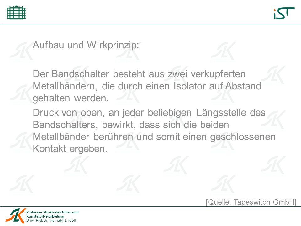Professur Strukturleichtbau und Kunststoffverarbeitung Univ.-Prof.
