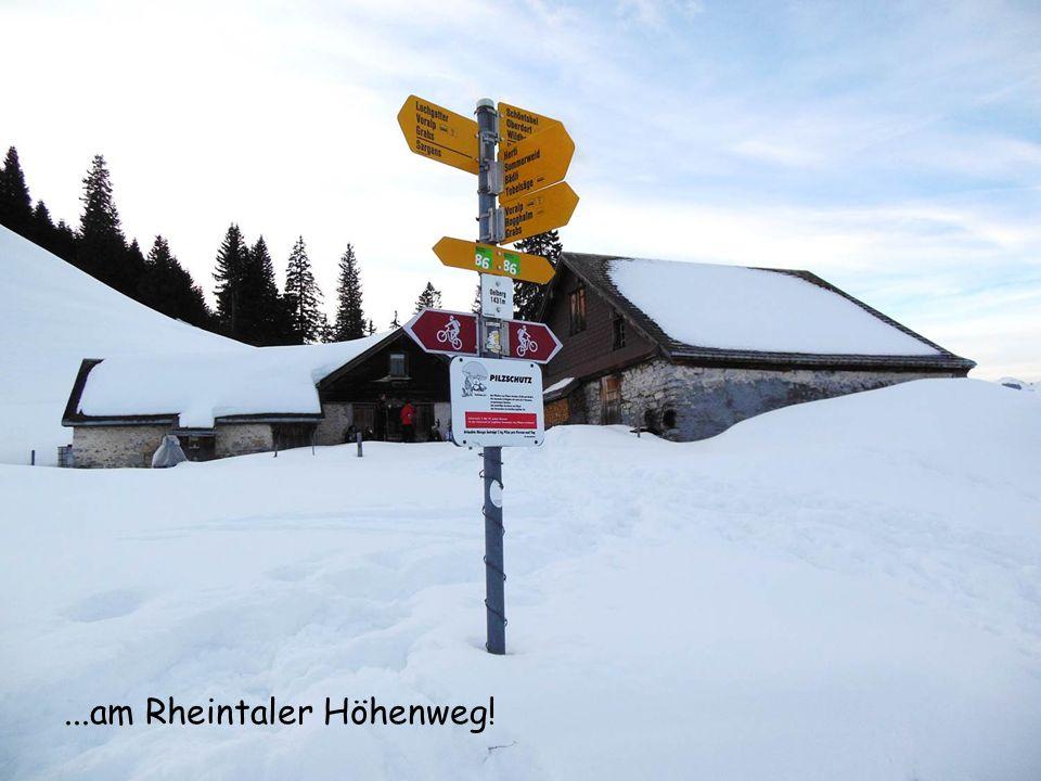...am Rheintaler Höhenweg!
