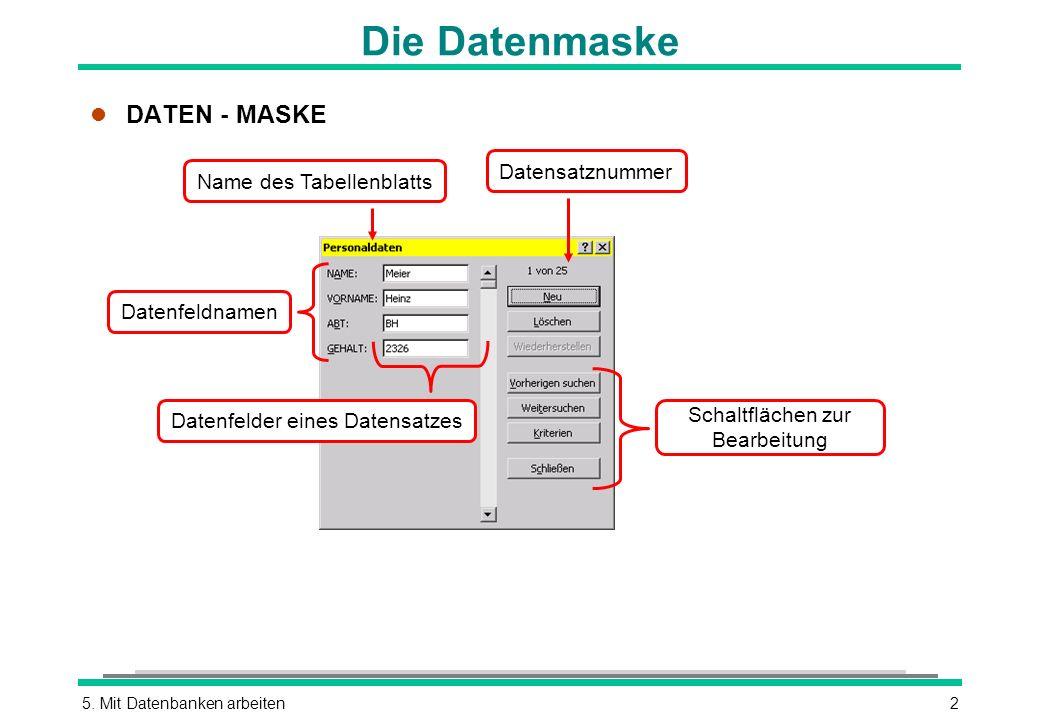 5. Mit Datenbanken arbeiten2 Die Datenmaske l DATEN - MASKE Schaltflächen zur Bearbeitung Name des Tabellenblatts Datensatznummer Datenfeldnamen Daten