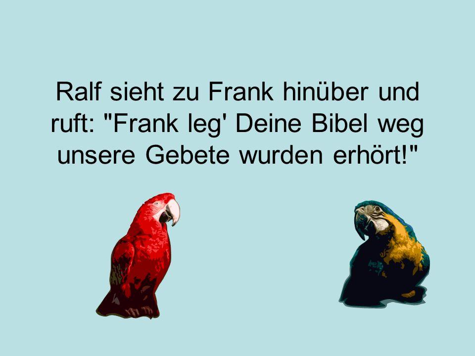 Ralf sieht zu Frank hinüber und ruft: