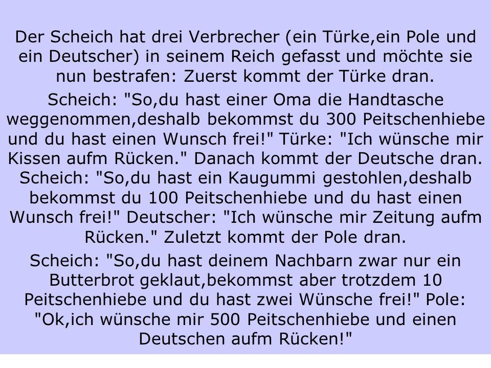 Der Scheich hat drei Verbrecher (ein Türke,ein Pole und ein Deutscher) in seinem Reich gefasst und möchte sie nun bestrafen: Zuerst kommt der Türke dr