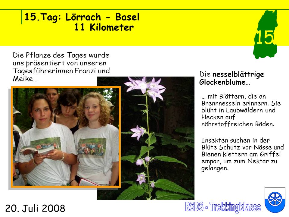 15.Tag: Lörrach - Basel 11 Kilometer 20. Juli 2008 15 Die Pflanze des Tages wurde uns präsentiert von unseren Tagesführerinnen Franzi und Meike… Die n