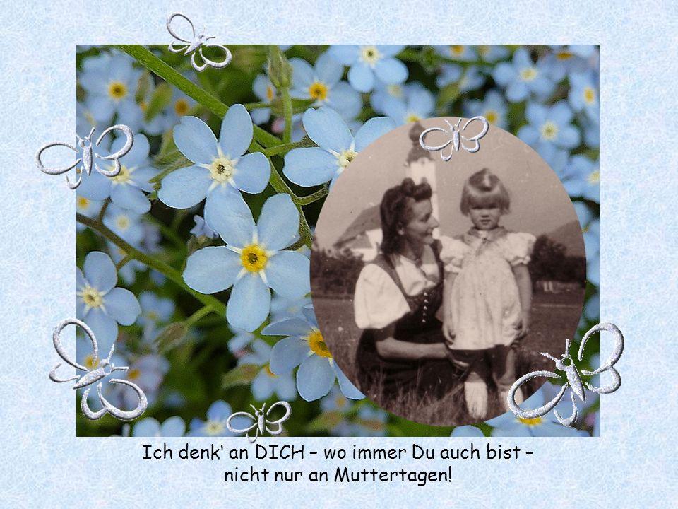 -4- Vergissmeinnicht, blaue Blütensterne hab ich gepflückt am Waldesrand für Dich Mutter, bist Du auch ferne - im Gedanken leg ich sie in Deine Hand.