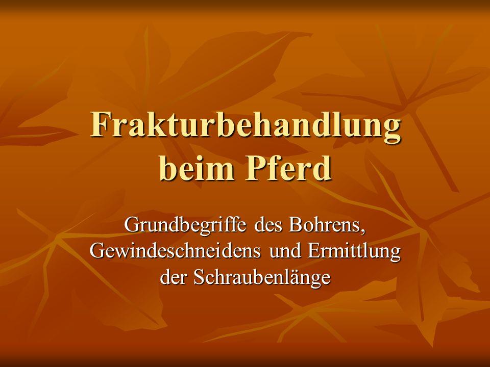 Instrumente - Platte - Knochenbohrer - Tiefenmessgerät - Gewindebohrer - Bohrhülse - Gewebeschutz - Imbus